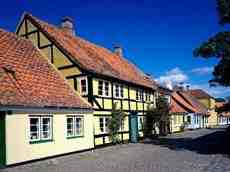 Dom na sprzedaz Wieliszew Skrzeszew